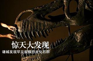 山东诸城发现世界上曝露面积最大的恐龙化石群