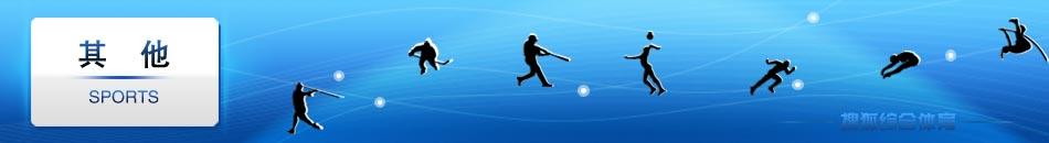 曲棍球,棒球,手球,垒球,击剑,皮划艇,赛艇,帆板,NFL,超级碗,武术,柳海龙,散打,太极,体育,搜狐体育,搜狐
