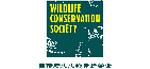 国际野生生物保护协会