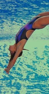 郭晶晶,五连冠,世锦赛,游泳世锦赛,罗马世锦赛,罗马游泳世锦赛