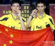 2006年羽毛球世锦赛